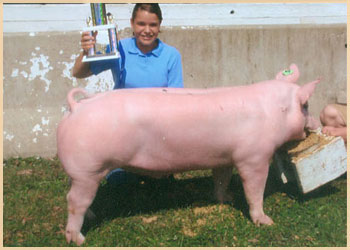 Grand Champion Jackpot Barrow