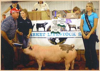 Grand Champion Market Hog
