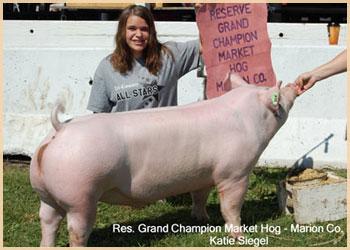 Reserve Grand Champion Market Hog