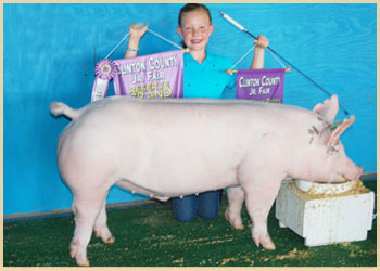 Reserve Grand Champion Market Hog