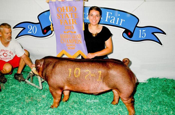Grand Champion Duroc Boar