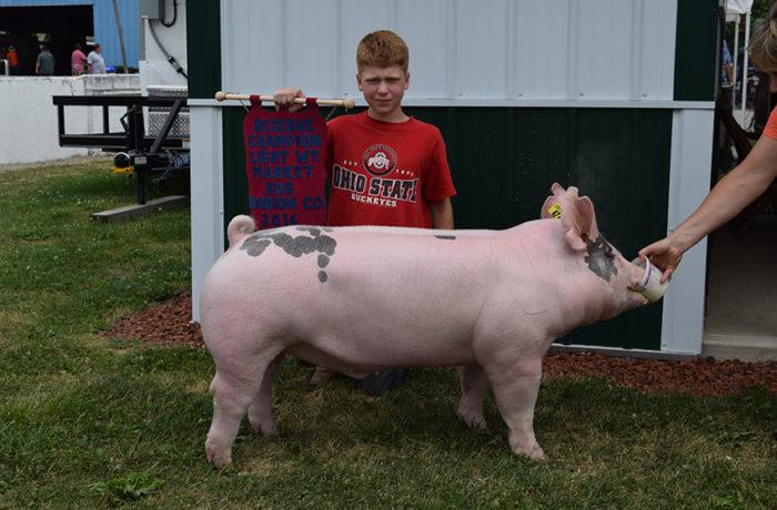 Reserve CHampion Lightweight Market Hog